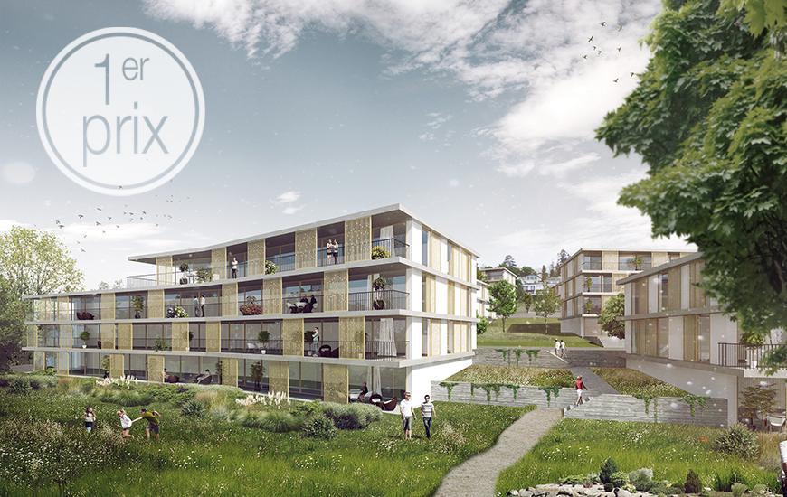 Projet lauréat au concours de logements à Pully